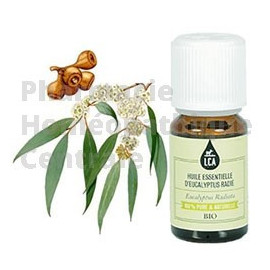 L'Huile essentielle d'eucalyptus radié bio est un allié de choix pour toutes infections hivernales.