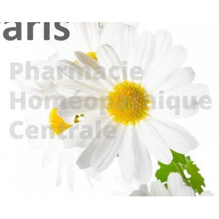 L'EPS de grande camomille est essentiellement utilisée pour les migraines.