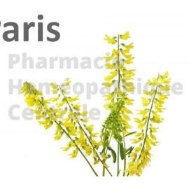 EPS de Mélilot recommandé pour l'insuffisance veineuse, les varices.