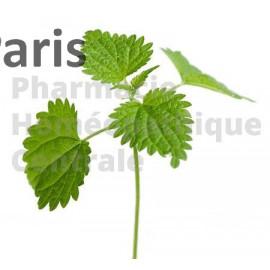 ORTIE (racines) Urtica dioïca  pour les troubles de la prostate et l'acné de l'adolescent.