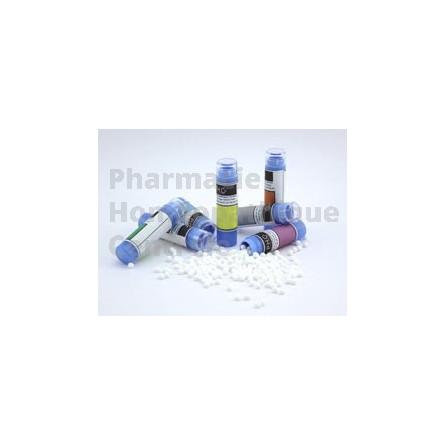 Psorinum - homéopathie PHG