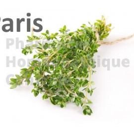 Le Thym possède des vertus antiseptiques pour soigner les infections pulmonaires. Thymus vulgaris