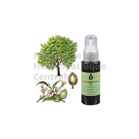 AMANDE DOUCE - Prunus amygdalus - HUILE VEGETALE BIO LCA