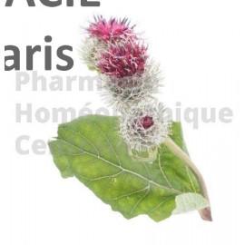 BARDANE Arctium lappa - racine en sachet de 75g  Plante phare de l'acné et de la surproduction de sébum