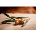 Liste des huiles végétales en aromathérapie